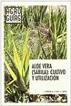 Aloe Vera (sabila) - cultivo y utiliz...