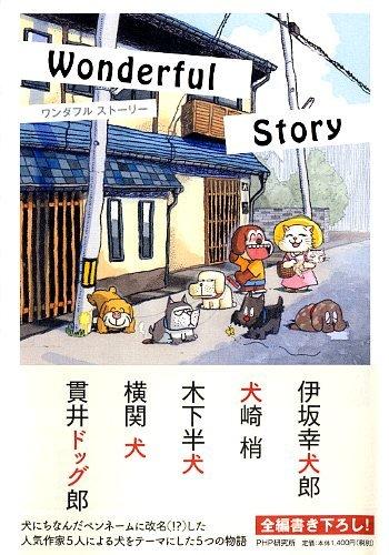 Wonderful Story