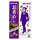 味覚糖 旨味シゲキックス 忍者めし 山ぶどう味 20g×10袋