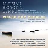 Welsh Boy Trebles