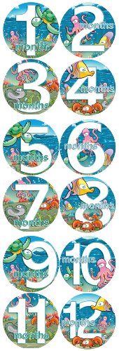 MARINE SEA LIFE TURTLES FISH Baby Boy Monthly Onesie Stickers Baby Month Onesie Stickers Baby Shower Gift Photo Shower Stickers, baby shower gift by OnesieStickers
