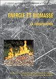 Energie et biomasse: La densification