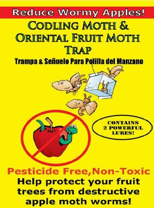 Codling Moth And Oriental Fruit Moth Trap (2