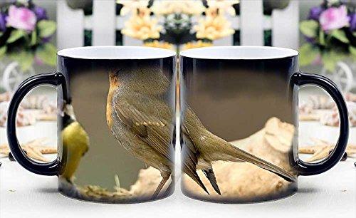 iRocket Magic Mug - Heat Sensitive Color Changing Coffee Cup - Quarrel. Magically Appear- Best Creative Gift Choice