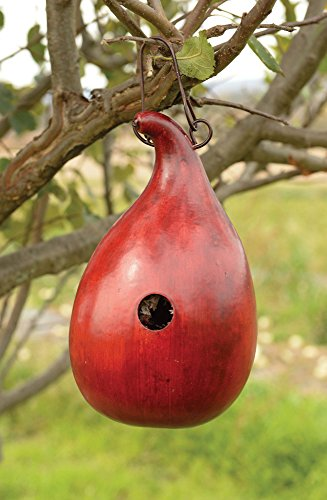meadowbrooke-gourds-all-season-bungalo-birdhouse-red-abb-7