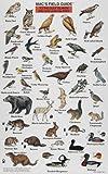 Mac's Field Guide to the Gulf Islands and San Juan Islands (Mac's Field Guides) (0898863384) by MacGowan, Craig