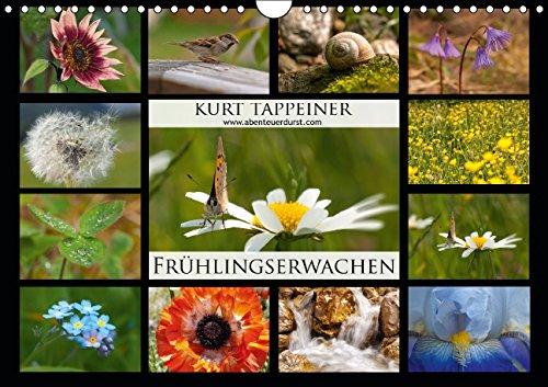 fruhlingserwachen-wandkalender-2015-din-a4-quer-fruhling-in-sudtirol-monatskalender-14-seiten