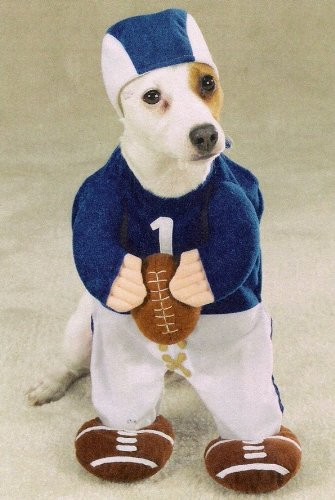 MEDIUM - FOOTBALL FEVER - Pet Halloween Costume