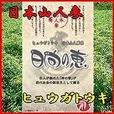 日本山人参茶(ヒュウガトウキ) 日向の恵 【メール便発送】