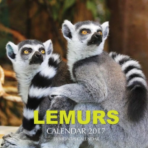 Lemurs Calendar 2017: 16 Month Calendar