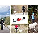 Buddy - Hands free dog leash connector - biking, jogging, hiking, walking
