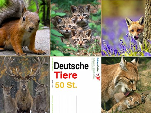 deutsche-wildlife-postcard-set-pack-of-50-perfect-for-post-crossing-and-pen