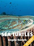 Sea Turtles - Beautiful Pictures and Fun Sea Turtle Facts for Kids (Discover the Worlds Most Amazing Animals Series)