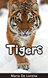 Tigers: Children Pictures Book & Fun Facts About Tigers
