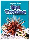 Sea Urchins (Blastoff! Readers: Oceans Alive) (Blastoff! Readers: Oceans Alive (Hardcover))
