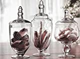 Palais Glassware High Quality Clear Glass Apothecary Jars - Set of 3 - Wedding Candy Buffet Containers