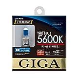 カーメイト(CARMATE) GIGA ハロゲンバルブ ザ・ブルー 5600K HB4/3 55W BD627