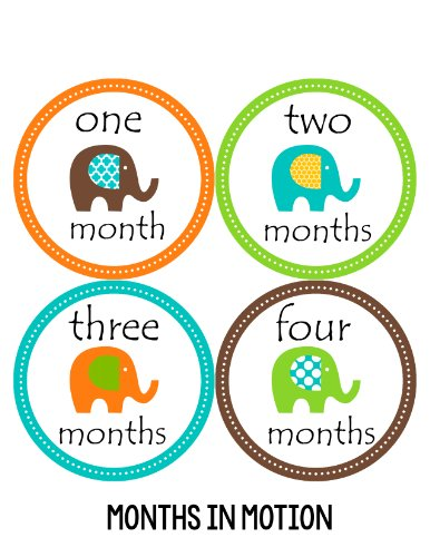 Months in Motion 097 Monthly Baby Stickers Gender Neutral Elephants Months 1-12