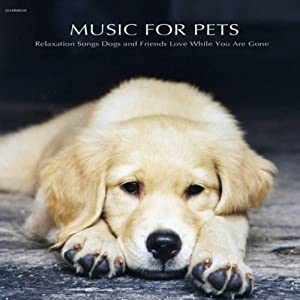 Music for Pets - Relaxation Songs Dogs and Friends Love While You Are Gone by Winter Hill Records