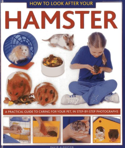 how to look after pets ks1
