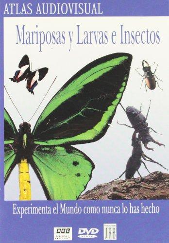 mariposas-y-larvas-e-insectos-dvd