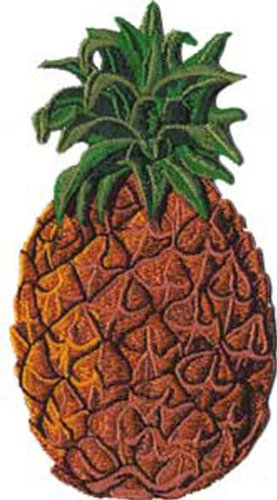 Application Pineapple Patch - 1