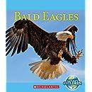 Bald Eagles (Nature's Children)