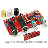 Generic DIY KIT : PT2399 NE5532 Karaoke Board Microphone Amplifier Board Preamplifier Reverberation Plate With...