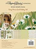 Pollyanna Pickering British Wildlife Card Making Kit, Daisy Mouse
