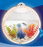 Fish Bubble (Yellow LED) by KAZE Home Décor