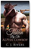 Romance: Taken by the Alpha Cowboy (Billionaire Western Rancher Romance) (Ranch Rich Contemporary Romance)