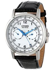 Citizen AO9000 06B Eco Drive Stainless Day Date