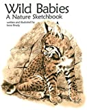 img - for Wild Babies, a Nature Sketchbook book / textbook / text book