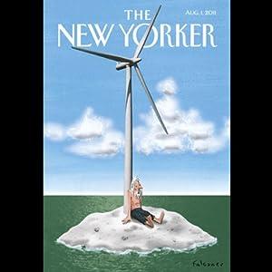 The New Yorker, August 1st 2011 (Suketu Mehta, Wendell Steavenson, Hendrik Hertzberg) Periodical