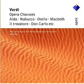 Verdi : Opera Choruses - Apex