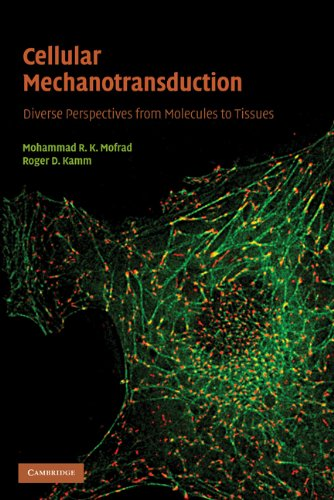 Cellular Mechanotransduction: Diverse Perspectives from...