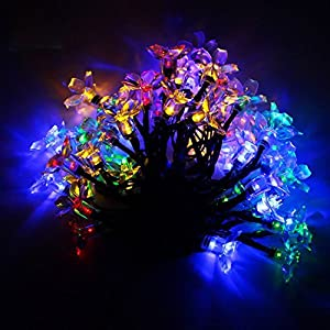 Christmas Novelty Lights Outdoor : Amazon.com : Bravodeal Novelty Solar Fairy Lights String 50 Multi-color Led Blossom Decorative ...