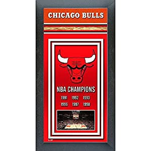 Photo File Chicago Bulls Framed Championship Photo by Photo File