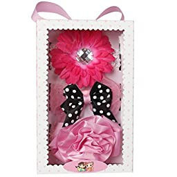 La Ribbons Baby Girl\'s Gift Box Headbands Chiffon Hair Flower (Pack of 3)