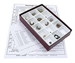 Scott Resources 15 Piece Life of the Past Paleozoic Era Fossil Collection Set