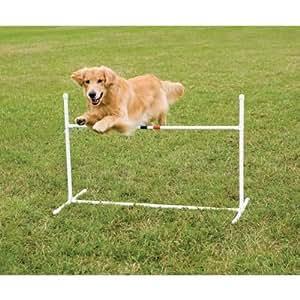 PetSafe Agility Bar Jump