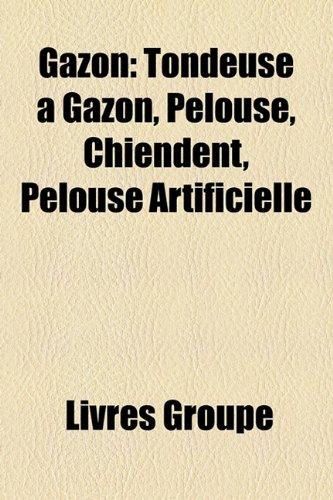 gazon-tondeuse-a-gazon-pelouse-chiendent-pelouse-artificielle