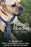 img - for Fifteen Shades for Grey book / textbook / text book