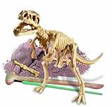 Tyrannus Rex zum Ausgraben hergestellt von Great Gizmos
