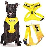 ADOPT MOI Couleur Jaune Coded Nylon rembourré étanche Medium Dog Harness Vest rembourré étanche réglable (New domicile nécessaires) Faire un don à votre organisme local...
