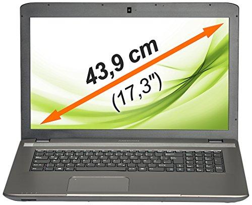 MEDION AKOYA E7227 (MD 98864) 43,9 cm (17,3 Zoll) Notebook (Intel Core i5-4210M, bis zu 2,6 GHz, 4 GB RAM, 1 TB HDD, Win 8.1) Silber