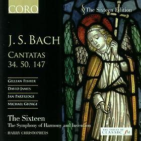J.S. Bach: Cantatas 34, 50, 147