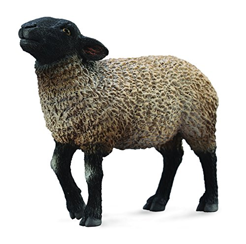 CollectA Suffolk Sheep