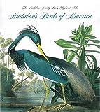 Birds of America: Audubon Society Baby Elephant Folio
