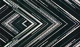 """【早期購入特典あり】 SAKANAQUARIUM 2015-2016 """"NF Records launch tour"""" -LIVE at NIPPON BUDOKAN 2015.10.27- (完全生産限定盤) (オリジナルポスターC付) [B..."""